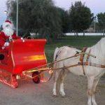 Trineo de Papá Noel y casita de Papá Noel