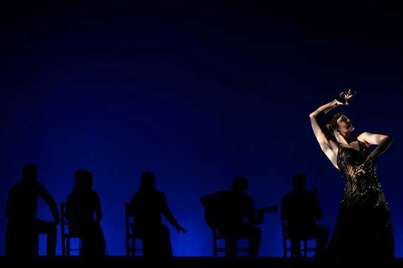 fondo flamenco a la sombra