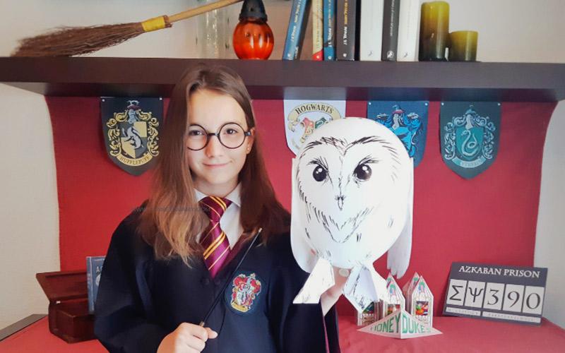 Temática de comunión de Harry Potter